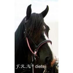 Bitless Dietsji F.R.A