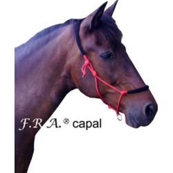 Licol en corde Capal F.R.A