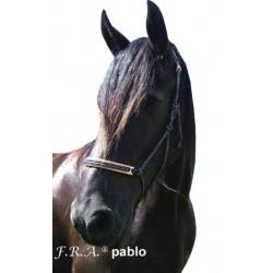 Licol en corde Pablo F.R.A