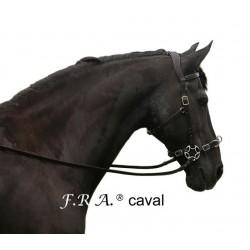 Hackamore étoile Caval F.R.A